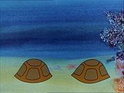 Болек и Лёлек путешествуют по свету.  3. На островах Полинезии