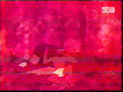 Человек и лев (1969)