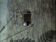 Сверчок и паук