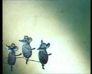 Как кот с мышами воевал...