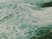 КОАПП.  8. Тайна зелёного острова