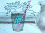 Мыльные пузыри кота тётушки Фло