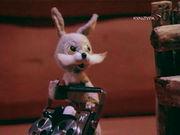 Раздобыл заяц магнитофон