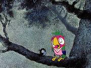 Возвращение блудного попугая (выпуск 1)