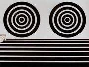 Жар-птица (1974)
